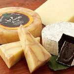 北海道内のおすすめチーズ工房