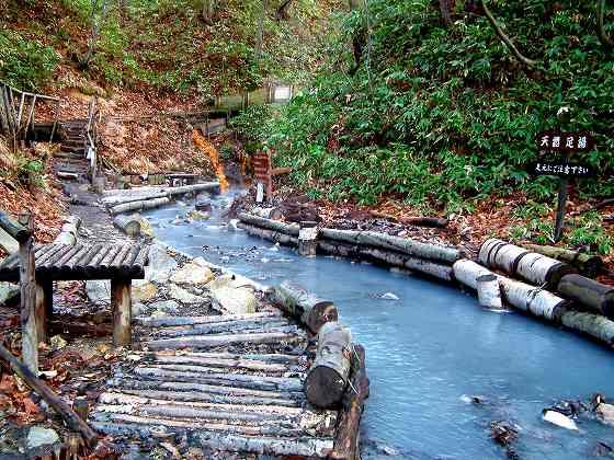 大湯沼川の天然足湯