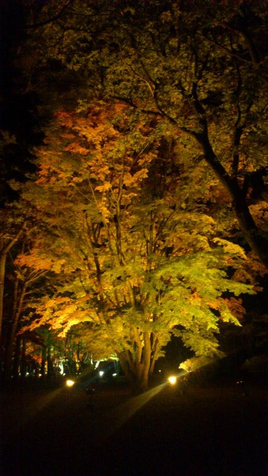 函館市の香雪園