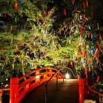 関西の夏のイルミネーション