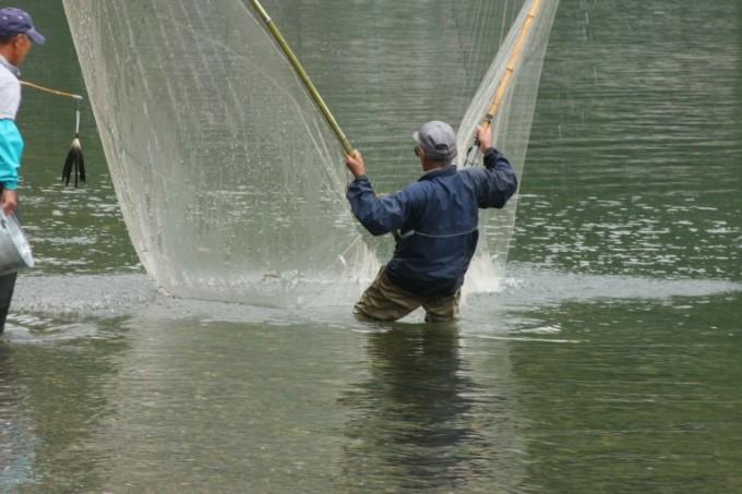 滋賀県民は全国で獲れる鮎は琵琶湖生まれと思っている