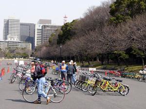 パレスサイクリング(二重橋前駅)