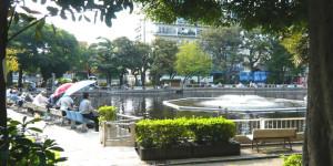 目黒区立清水池公園釣り堀池