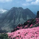 九州各県の日帰りで登れるおすすめの山をご紹介