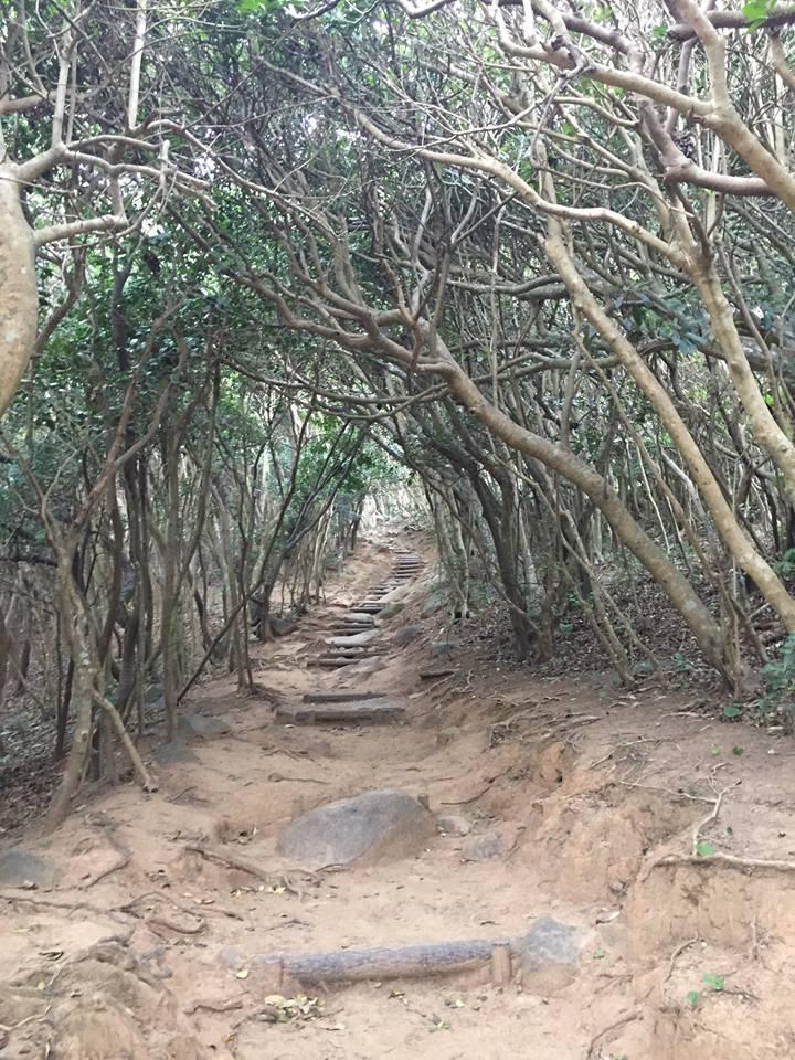 天然記念物の「芥屋の大門」