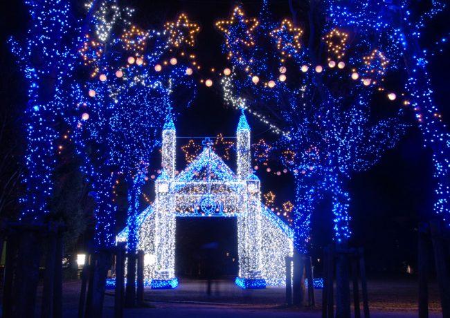 新亀山公園のイルミネーション