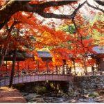 定番から穴場まで!絶対外せない広島のおすすめ人気観光スポット