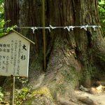 【島根県】開運間違いなし! パワースポットとして知られる神社10選