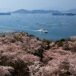 広島県のおすすめの花見スポットを厳選