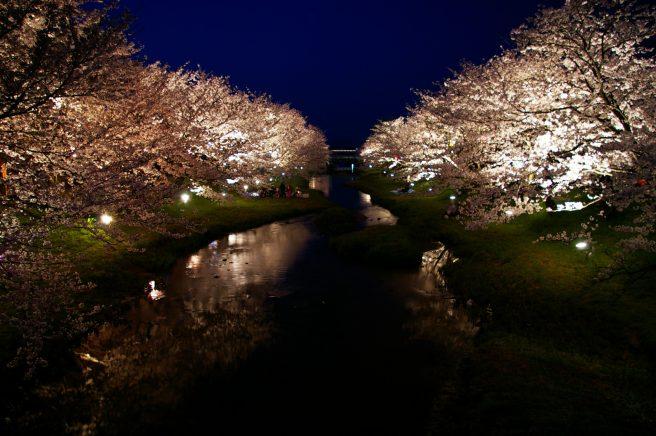 玉湯川桜並木