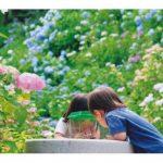 山口県でおすすめの子ども・親子おでかけイベント
