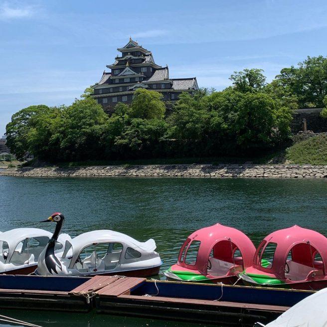 碧水園 桃ボート