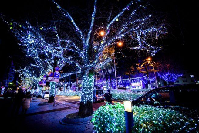 周南冬のツリー祭り