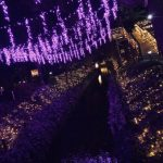 岡山県でおすすめのイルミネーションスポット