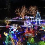 鳥取県でおすすめのイルミネーションスポット