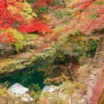 意外と知らない岡山県の紅葉スポットを厳選