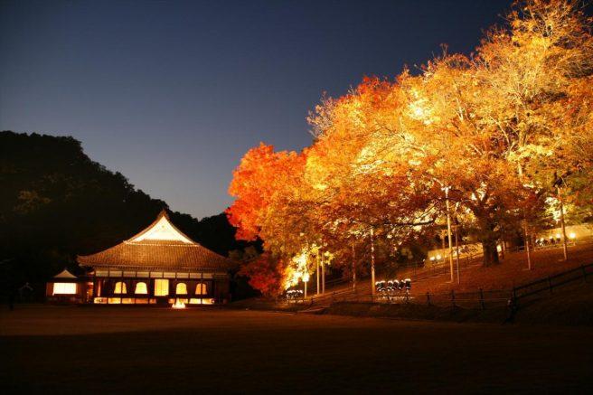 旧閑谷学校 紅葉