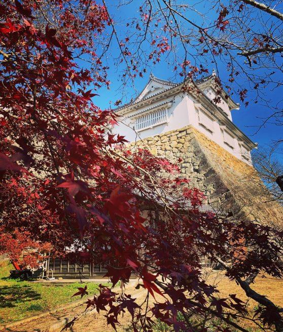 津山城 紅葉