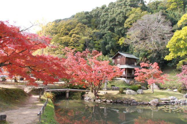 近水園 紅葉