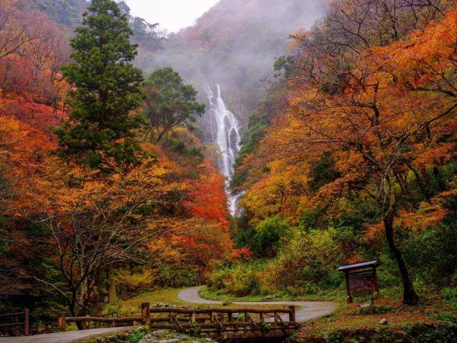 神庭の滝 紅葉