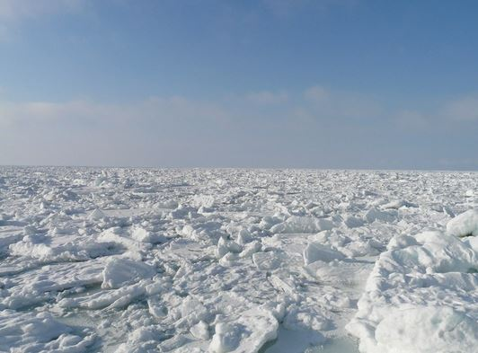 流氷ウォーク