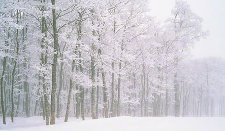 雪が降る前日の寒さは尋常