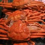 北海道の美味しくて安い蟹の購入の仕方教えます