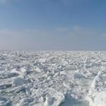 北海道には流氷が!砕氷船、流氷ウォークとは