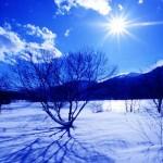 冬季の北海道あるある〜雪解けあるあるも〜