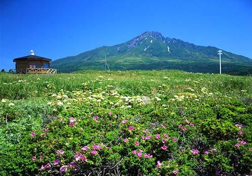 利尻島沓形岬公園