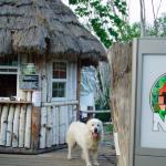 5月(GW)に北海道を満喫するならお勧めの観光名所