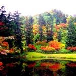 北海道の大自然を満喫できる公園を厳選