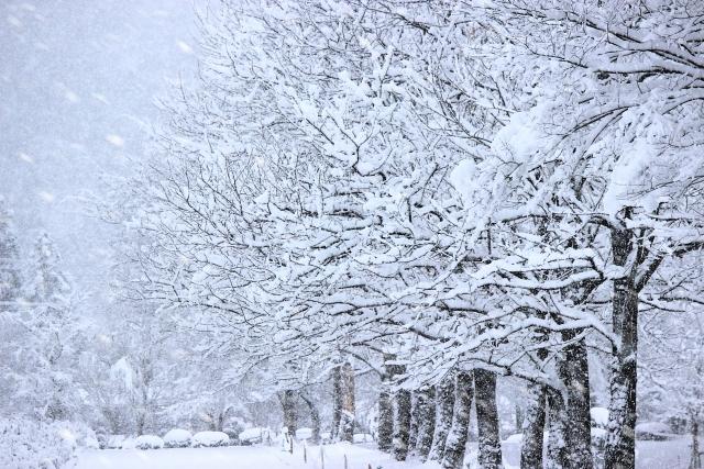 北海道の冬を乗り過ごすための服装の指南書