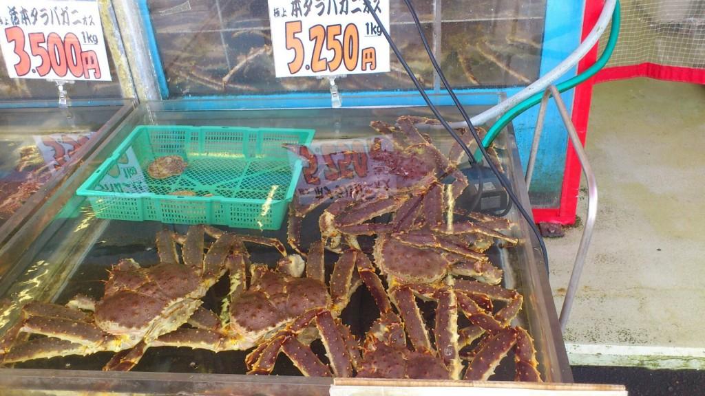函館で美味しいと話題の絶対おすすめの海鮮丼