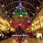 買い物好きな女性向けの札幌の観光名所ランキング
