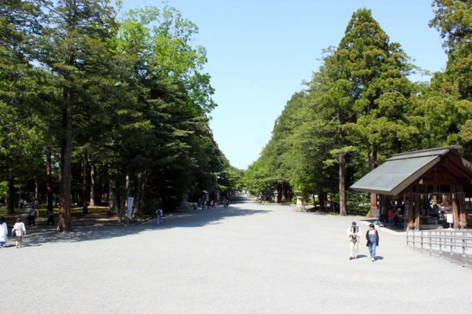 海道神宮or札幌市円山動物園