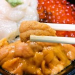 函館をモデルコースで遊び倒す!観て、食べて、知って大満足!