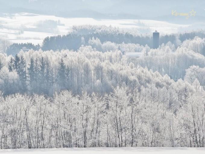 2月の北海道