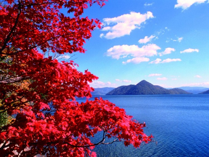 洞爺湖紅葉