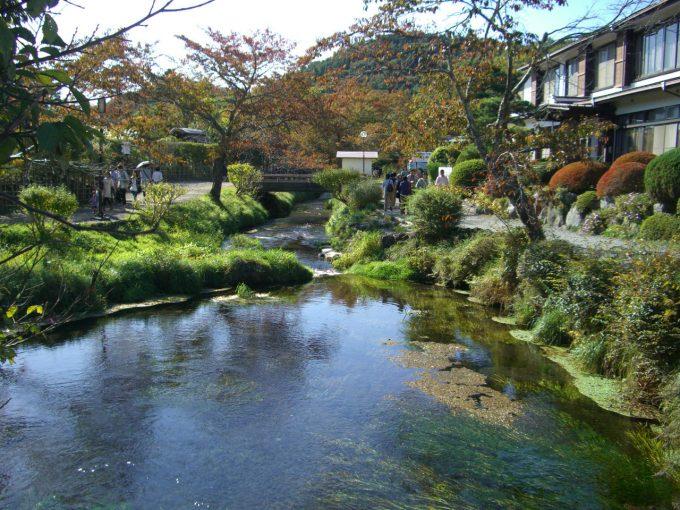濁池(にごりいけ)