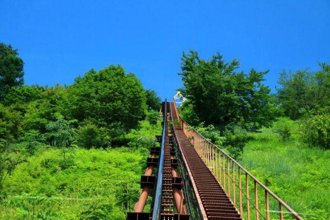 南八ヶ岳花の森公園