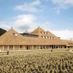 最近話題の滋賀県の観光名所を厳選
