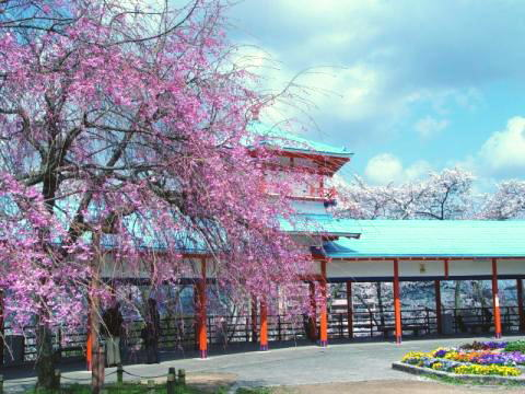 長野公園(河内長野市)