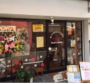 大阪 ドッグカフェ ドッグチビ
