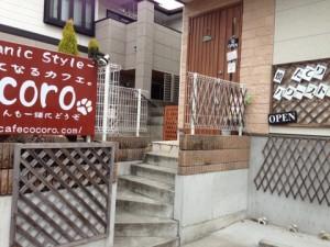 kokoro 店