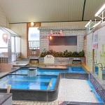 大阪今も健在、おすすめの大衆浴場(昔ながらの銭湯)
