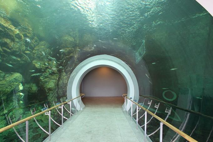 滋賀県のデートスポット「琵琶湖博物館」