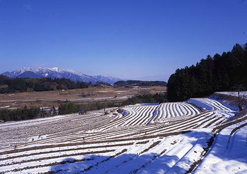 冬の滋賀県 棚田の形が良くわかる「大津市仰木町の棚田」