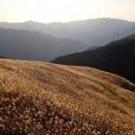 大阪のハイキングコースを厳選