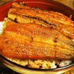 大阪で美味しい鰻が食べられるお店を厳選
